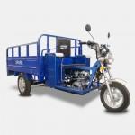 Грузовой мотоцикл SP125TR-2